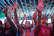 Fans at the 2015 Trillectro Music Festival