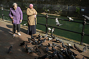 Women feeding the pigeons in Wapping on 24th May 2021 in London, United Kingdom.