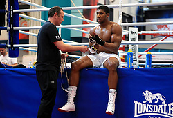 Anthony Joshua with trainer Robert McCracken during the workout at the English Institute of Sport, Sheffield.