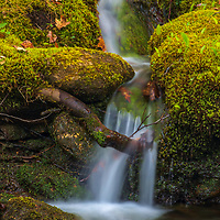 Visiting Central Massachusetts and Willard Brook State Forest is always a lot of photography fun. Trap Falls is one of the many scenic and beautiful New England waterfalls. I discovered this tiny waterfall not far from Trap Falls and was thrilled with all the fresh moss framing it.  <br /> <br /> Massachusetts waterfalls photography images are available as museum quality photo, canvas, acrylic, wood or metal prints. Fine art prints may be framed and matted to the individual liking and interior design decoration needs:<br /> <br /> https://juergen-roth.pixels.com/featured/new-england-waterfalls-juergen-roth.html<br /> <br /> Good light and happy photo making!<br /> <br /> My best,<br /> <br /> Juergen