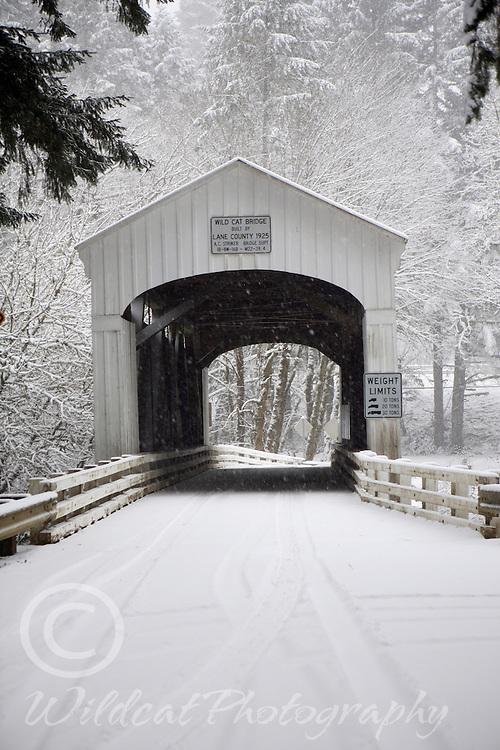 Wildcat Covered Bridge in winter