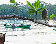 Costa Rico 1-14/23-09.