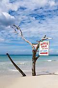 Driftwood sign for beach bar, Negril, Jamaica