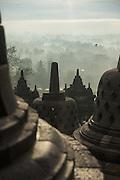 Stupas and trees, Borobudur, Kedu Valley, South Central Java, Java, Indonesia, Southeast Asia
