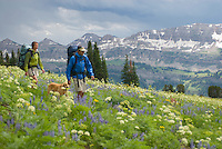 A young couple hikes through an alpine meadow with their dog in the Targhee National Forest, Wyoming.