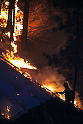A wildland firefighter works on a blaze in Conconully, which threatened houses and prompted a level three evacuation Friday August 21, 2015.<br /> <br /> Bettina Hansen / The Seattle Times