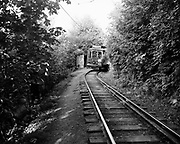 Y-490809-04.  Council Crest trolley on last run. Trolley 504 pauses at a stop near Council Crest. August 9, 1949.