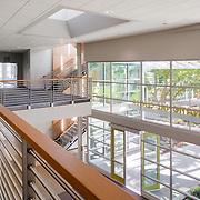 MFDB- UC Davis International Center