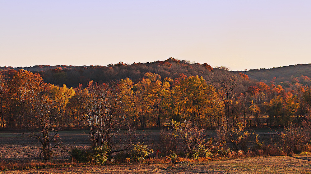 There is something about the colors of autumn and even winter this year based on or weather in Saint Louis that inspires me. I really love simple tree line photos that just express the color of the season. Somehow simple landscape images such as this inspire me.