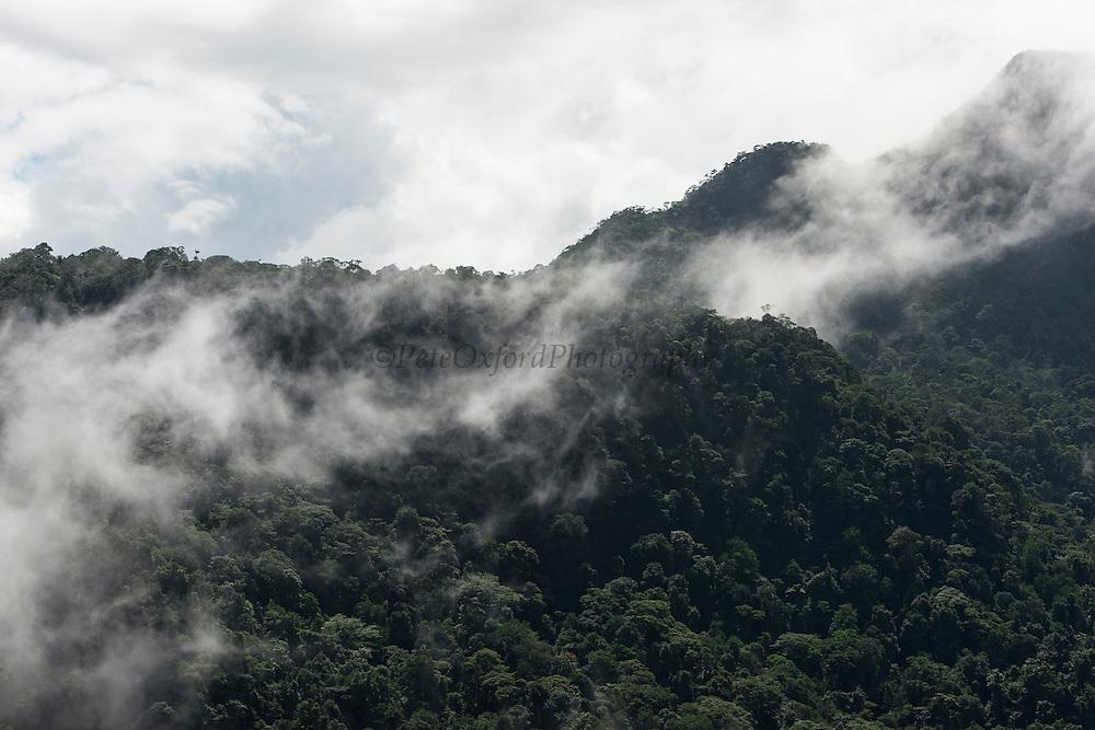 Tepuis (Flat-topped mountains)<br /> Pakaraima Mountains<br /> Potaro-Siparuni Region<br /> Brazil Guyana border<br /> GUYANA<br /> South America