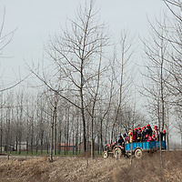 During the Cultural Revolution, university students traveled the countryside to spread Mao Zedong Thought. Today these students ride a tractor to the next village to spread evangelical Christianity.