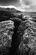 Lichen on a split rock in Garrapata State Park, California