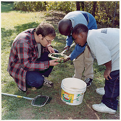 "Forestry Students in Field Study with New Haven Middle School Students. Yale School of Forestry & Environmental Studies. Viewbook Illustration. Comp files only: Contact Photographer for new high res scans from the original 2.25"" square negative."