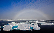 Fog bow at 81,5 degrees north, off Spitsbergen, in late July 2012.