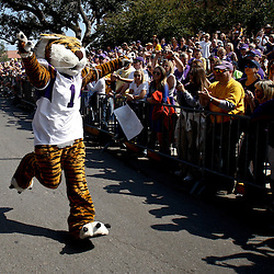 October 22, 2011; Baton Rouge, LA, USA; The LSU Tigers mascot Mike the Tiger prior to kickoff of a game against the Auburn Tigers at Tiger Stadium.  Mandatory Credit: Derick E. Hingle-US PRESSWIRE / © Derick E. Hingle 2011