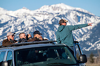 Jackson Hole EcoTour Adventures guide Verlin Stephens, rights, points out moose and elk during a tour with Wyoming Game and Fish commissioners and other state wildlife stakeholders April 19 in Grand Teton National Park.