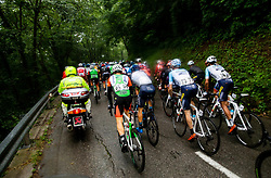 Peloton during 4th Stage of 26th Tour of Slovenia 2019 cycling race between Nova Gorica and Ajdovscina (153,9 km), on June 22, 2019 in Slovenia. Photo by Vid Ponikvar / Sportida