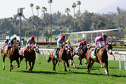 March 30, 2018 - Arcadia, California, USA - Horse Racing - CONQUEST TYPHOON [green #5] with jockey TYLER BLAZE  finished in second place during the 8th race of the day, on the grass,  at Santa Anita Race Track, Arcadia, California, USA, March 29, 2018.  ROYAL ALBERT HALL (GB) with jockey DRAYDEN VAN DYKE [#9] finished in third place...Credit Image  cr Scott Mitchell/ZUMA Press (Credit Image: © Scott Mitchell via ZUMA Wire)