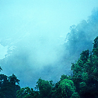 Dense forests grow on the lower slopes of Mount Gyala Pheri above the Tsangpo River Gorge (upper Brahmaputra) in remote eastern Tibet, China. Some call this the deepest canyon on earth.