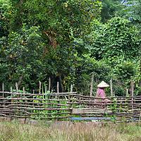 A woman working in her garden in Vang Vieng.