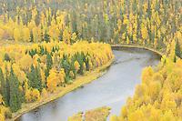 Kitkajoki river, Oulanka, Finland.