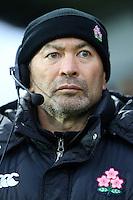 November 15 2014 Romania v Japan 1st half - coach Eddie Jones- Bucharest, Romania.
