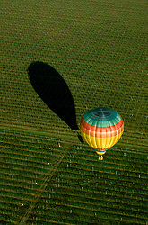 CA, Ballooning, Napa Valley .Photo: canapa103..Photo copyright: Lee Foster, 510-549-2202, lee@fostertravel.com, www.fostertravel.com
