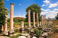 Pillars of the Roman South Agora, Aphrodisias Archaeological site, Turkey .<br /> <br /> If you prefer to buy from our ALAMY PHOTO LIBRARY  Collection visit : https://www.alamy.com/portfolio/paul-williams-funkystock/aphrodisias-site-turkey.html<br /> <br /> Visit our TURKEY PHOTO COLLECTIONS for more photos to download or buy as wall art prints https://funkystock.photoshelter.com/gallery-collection/3f-Pictures-of-Turkey-Turkey-Photos-Images-Fotos/C0000U.hJWkZxAbg