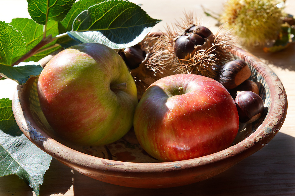 Fresh Apples & Chestnuts
