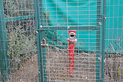 fire hydrant locked in a cage Hamasrek (Comb) Nature reserve is a forest located in the Jerusalem Hills, Israel