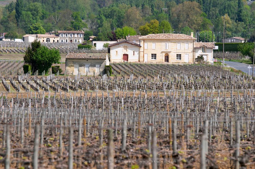 PROBABLY chateau tour saint pierre saint emilion bordeaux france