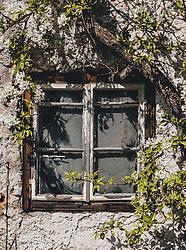 THEMENBILD - ein altes, weißes Holzfenster umrahmt von einem blühenden Apfelbaum während der Corona Pandemie, aufgenommen am 17. April 2019 in Hallstatt, Österreich // an old, white wooden window framed by a blossoming apple tree during the Corona Pandemic in Hallstatt, Austria on 2020/04/17. EXPA Pictures ©️ 2020, PhotoCredit: EXPA/ Stefanie Oberhauser