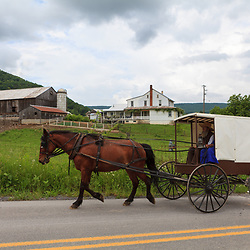 Belleville, PA - May 23, 2012: An Amish buggy with a white top and brown bottom on a rural road near Belleville in Kishacoquillas Valley, Mifflin County, PA.