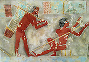 Men Splitting Papyrus, Tomb of Puimre. Copied by Hugh R. Hopgood (Egyptian Expedition Graphic Section). New Kingdom. 18th Dynasty, Joint reign of Hatshepsut and Thutmose III ca. 1473–1458 B.C. Egypt, Upper Egypt; Thebes. Tempera on Paper