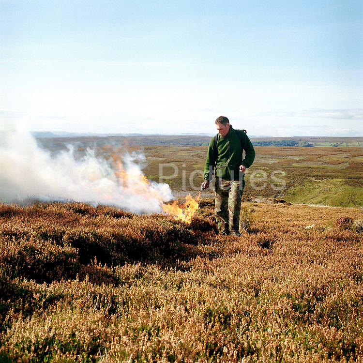 Gamekeeper, Charlie Woof, lights the dry heather moorland for burning, Bransdale shooting estate, North York Moors, UK. Heather is burnt to regenerate it - the more patches there are on a moor the better it is, producing more habitat for the grouse, and that has a knock on effect for the wader population.