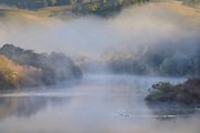 Fog rises from the Russian River on a cold November morning near Duncan's Mills, Sonoma County, California