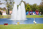 Water Fountain and Playground at Cerritos Community Regional Park