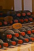 Bottles aging in the cellar. 1950. Chateau Grand Corbin Despagne, Saint Emilion Bordeaux France