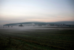 Scenic view of agricultural field during misty morning, Bavaria, Germany