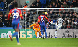Cardiff City's Sol Bamba in action during the Premier League match at Selhurst Park, London.