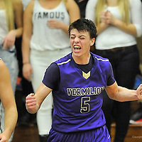 1.17.2014 Vermilion at Elyria Catholic Boys Varsity Basketball