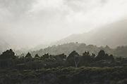 A moment on sunlight between clouds over shrubland on hillsides, The Southern Circuit, Stewart Island / Rakiura, New Zealand Ⓒ Davis Ulands   davisulands.com