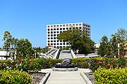 The Laurel Wilkening Rose Garden at UCI, Looking Towards University Center