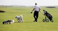SANDWICH (GB) - Honden op de golfbaan. The Prince's Golf Club. Lined Dogs allowed . COPYRIGHT KOEN SUYK