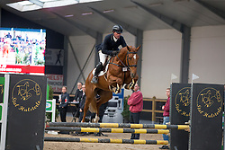 027, Nondeju JW<br /> 3de phase BWP Keuring - Stal Hulsterlo - Meerdonk 2016<br /> © Hippo Foto - Dirk Caremans<br /> 17/03/16