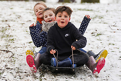 © Licensed to London News Pictures. 02/1/2021. Olly 7, Enna 7 and Nya 6, enjoy sledging in the snow at North Park in Darlington following a heavy snow last night.   Photo credit: Ioannis Alexopoulos/LNP <br /> <br /> <br /> **Permission Granted