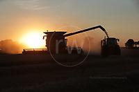 Copt Hall Farm - Combine Harvester  4th August 2018