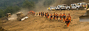 Greeley Hill, California-- July 30, 2008-Telegraph Fire-Wildfires Threaten Yosemite National Park. Day begins as California Department of Corrections fire crew heading out to cut fire line on Division L which is near the leading edge of the fire.  This section of the fire is endangering Greeley Hill..Photo by Al GOLUB/Golub Photography