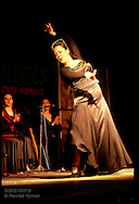 Woman performs flamenco, striking classic pose at Festival de los Patios street party; Cordoba Spain