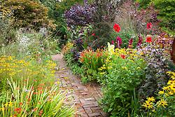 Brick path through the hot borders at Glebe Cottage. Dahlia 'Bishop of Llandaff', Rudbeckia fulgida var. deamii, crocosmias, gladiolus and Cotinus coggygria Purpureus Group
